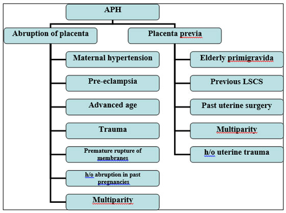 Gestational Age 6 What Is The Treatment For Placenta Previa